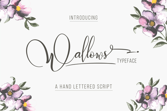 Wallows Font Download