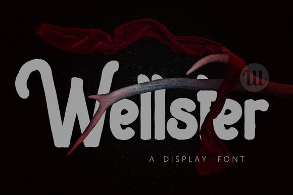 display-wellster-f