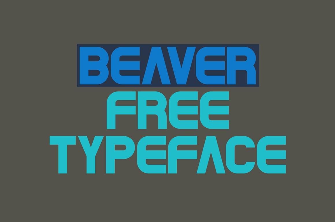 Beaver Font Download