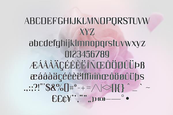 ec90c8b618a448e8823f1c84c9a808ea