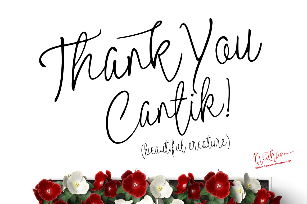 thank_you_neithan_modern_monoline_script-o