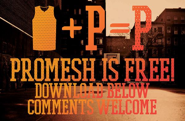 Promesh Font 6