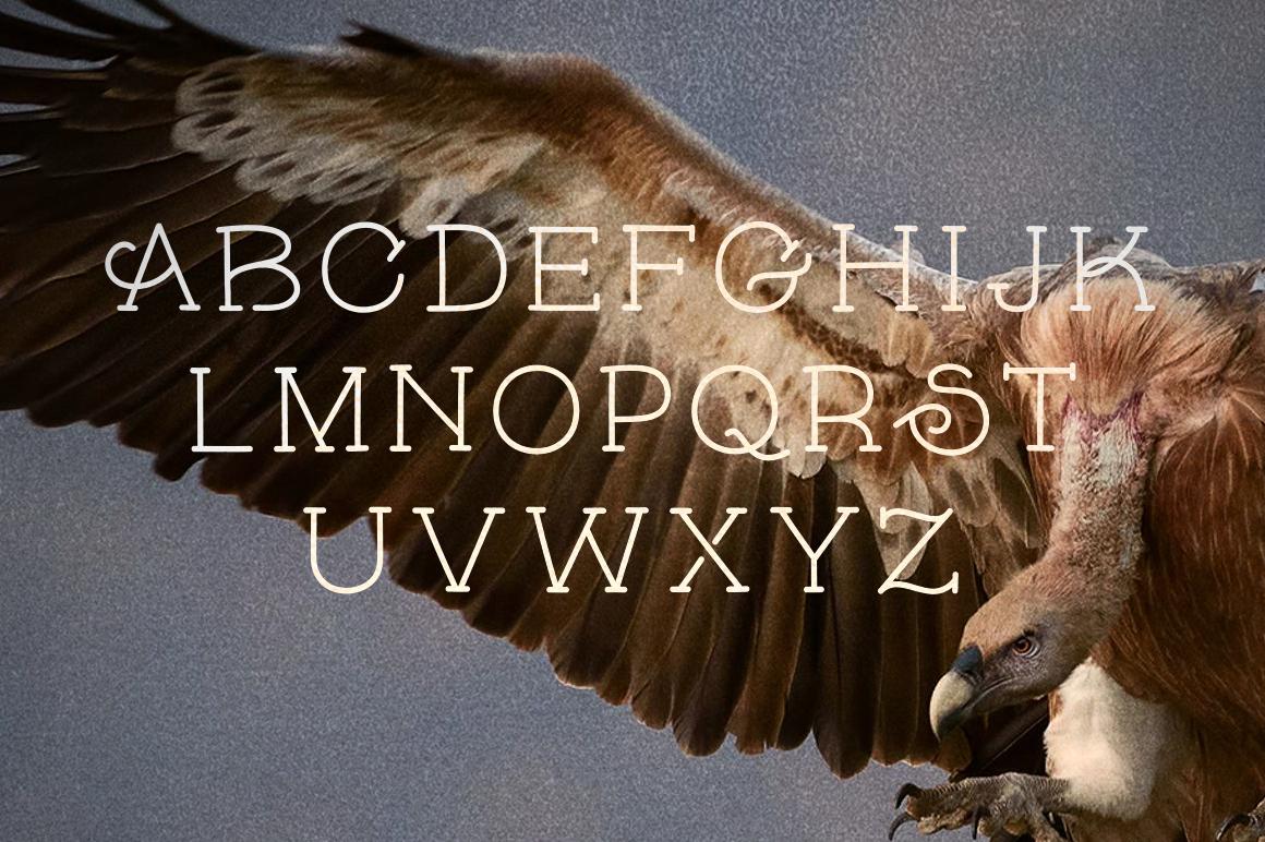 skybird-eagle