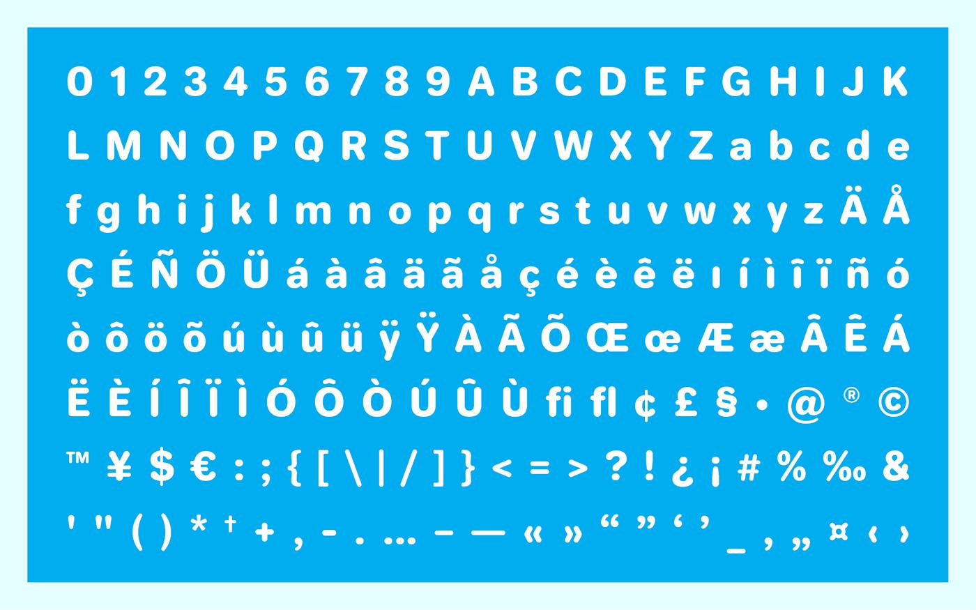 Jellee Typeface11