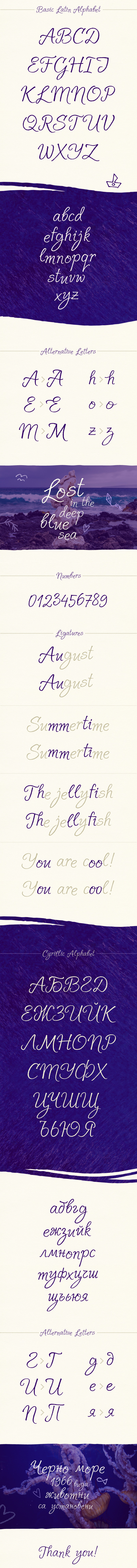 Solena Script Font 12