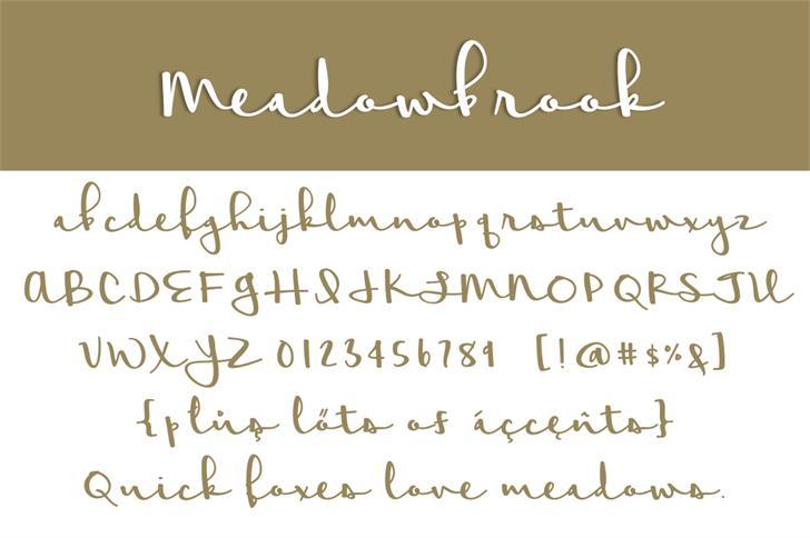 Meadowbrook Font