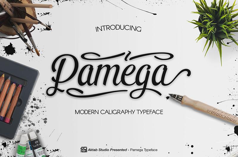 Pamega script font befonts