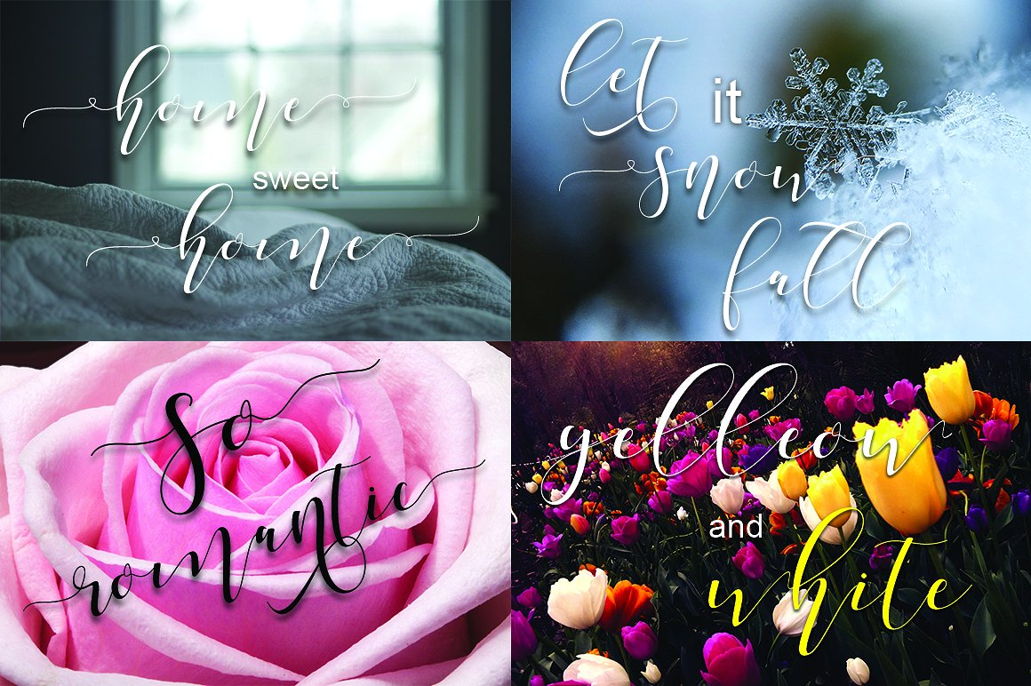 Shania Script Font