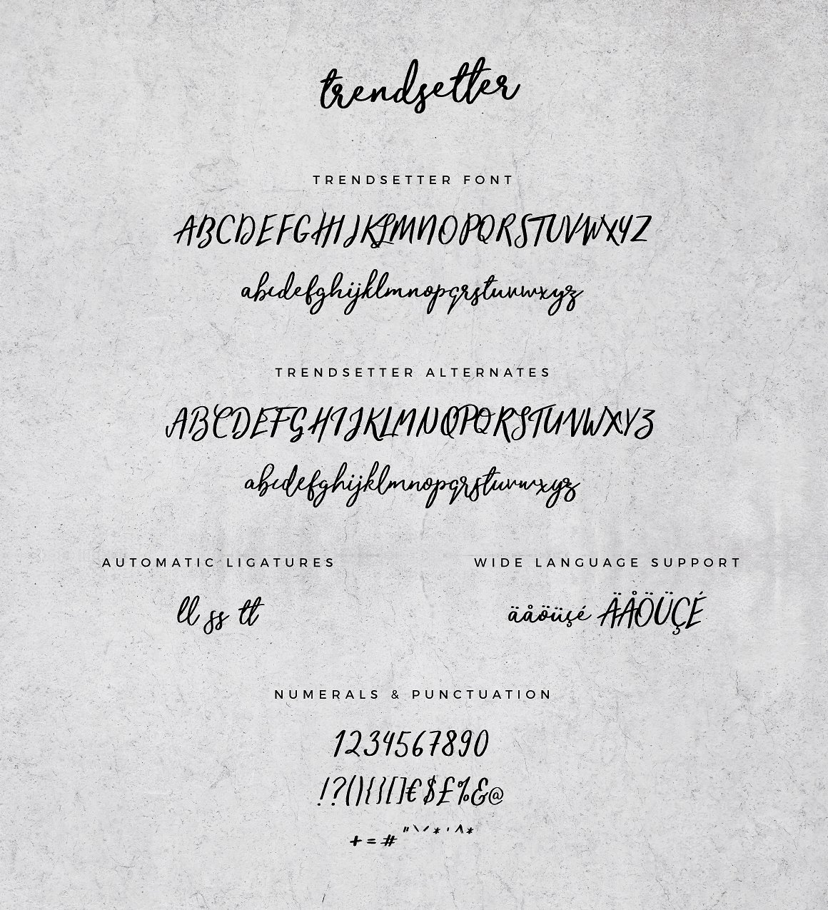 Trendsetter Script Font