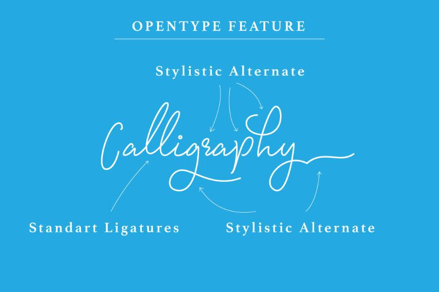 Signatura Monoline Script Font