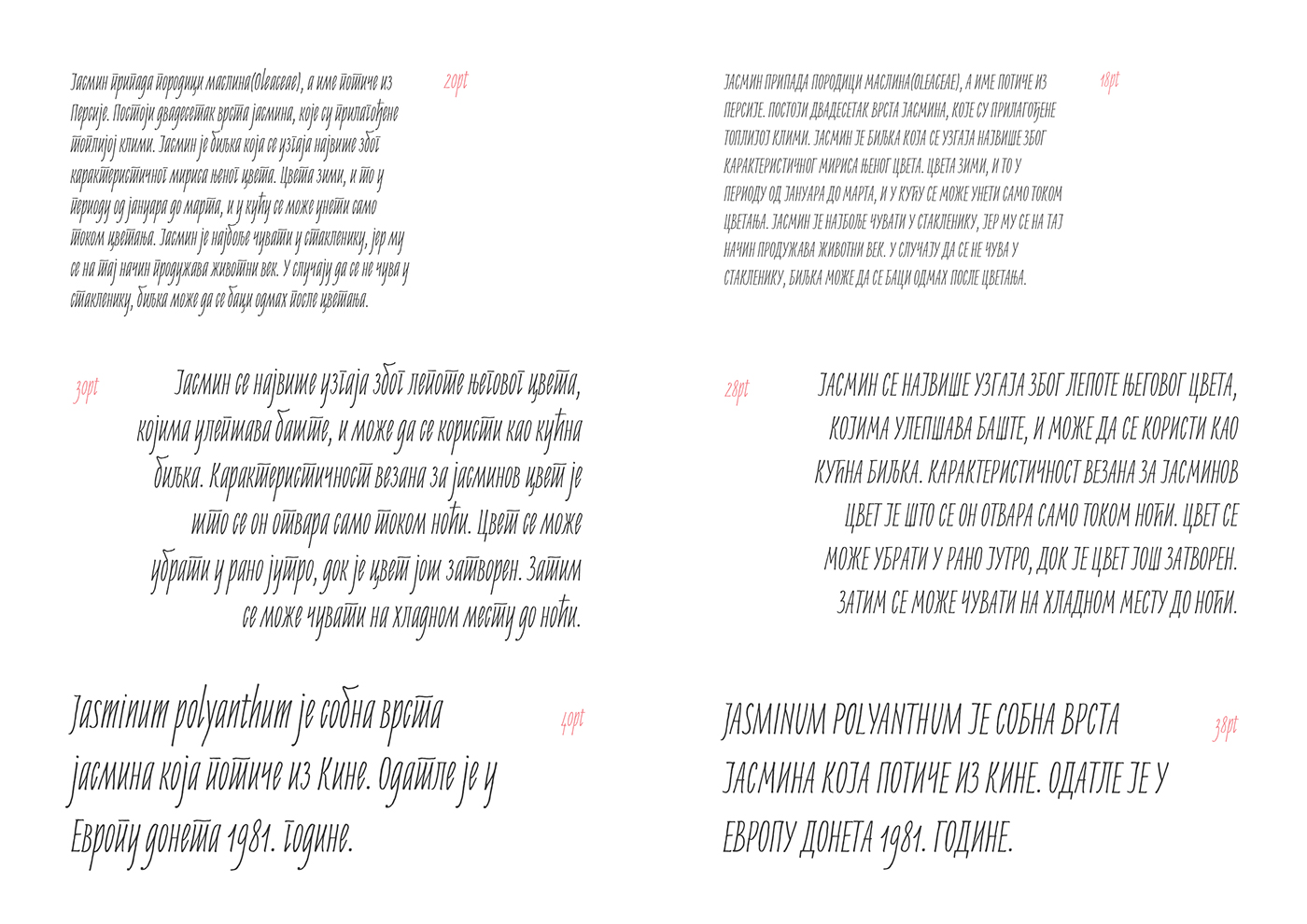 Jasminum Handwriting Font