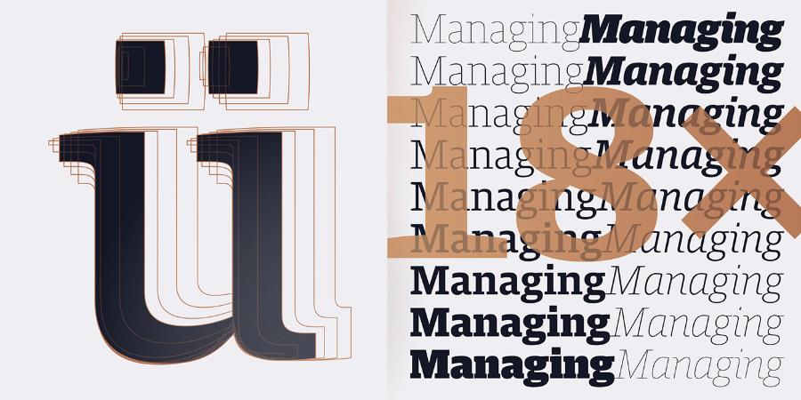 Harrison Serif Pro Font Family