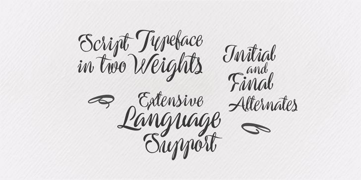 Preside Script Font