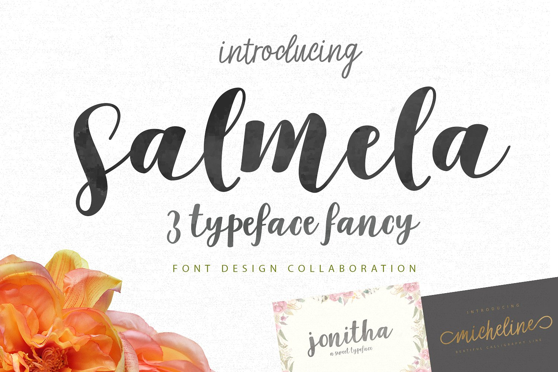 Salmela script font befonts salmela script font kristyandbryce Choice Image