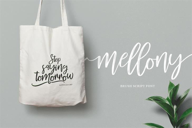 Mellony Brush Font