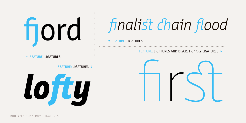 Bunaero Pro™ Font Family