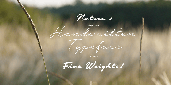 Notera 2 Script Font
