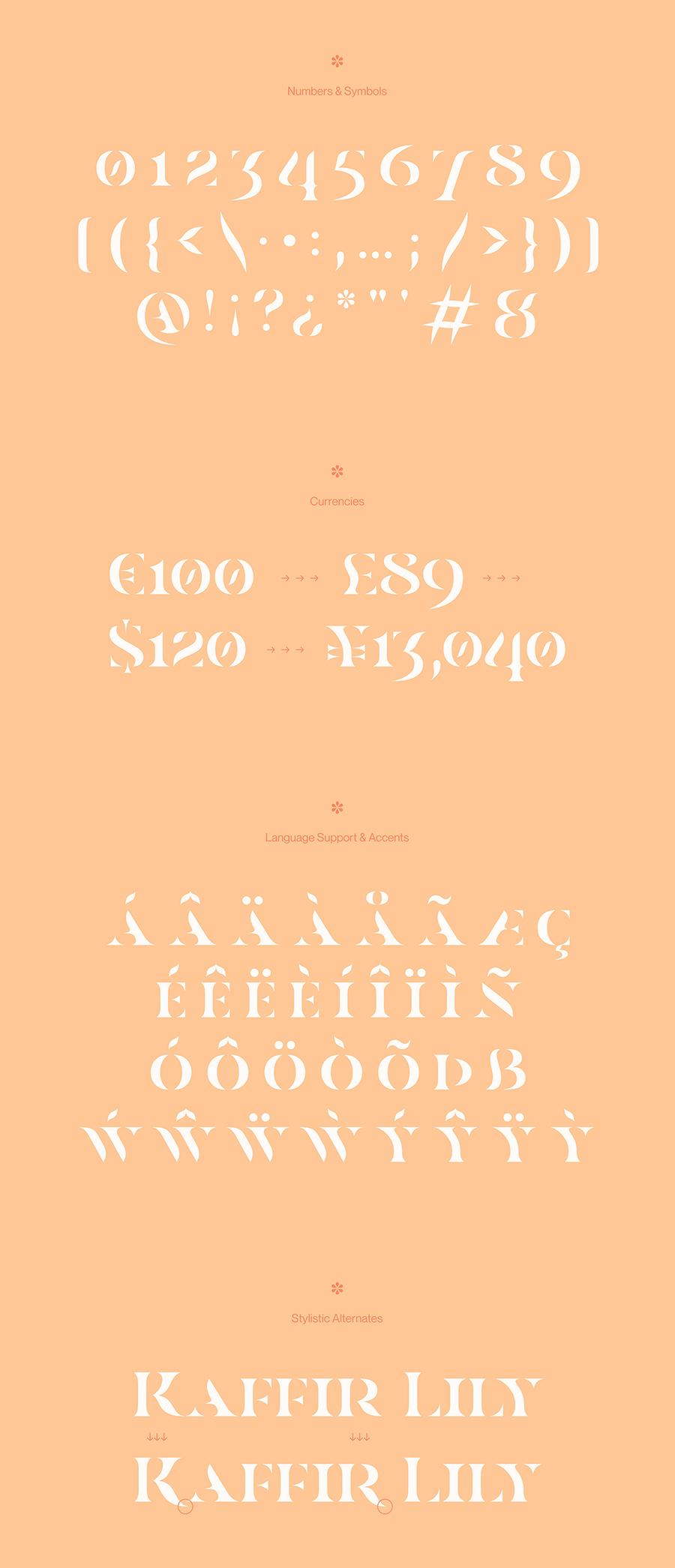 Casa Stencil Typeface
