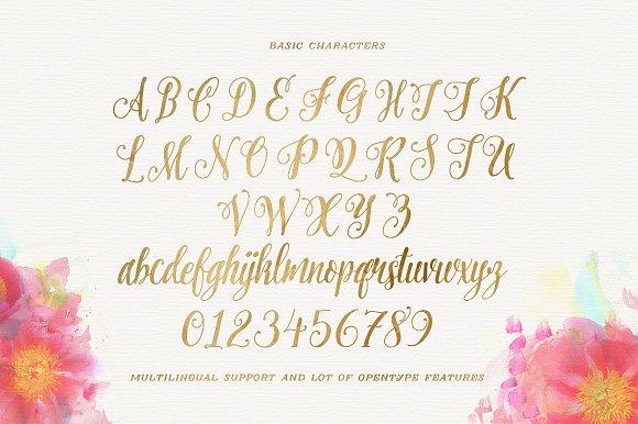 Pretty Script Font