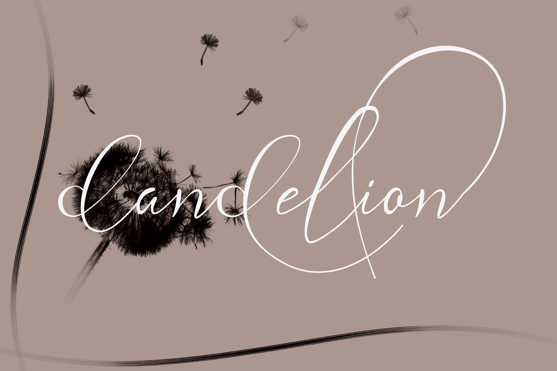 Andora Ardelion Script Font