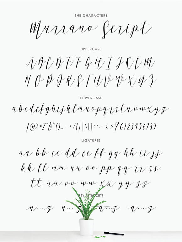 Murrano Script Font