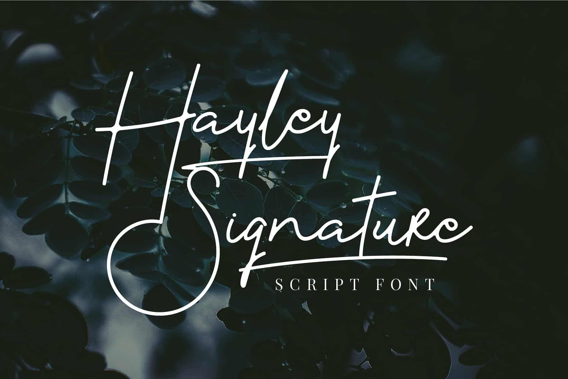 Download Hayley Signature Font - Befonts.com