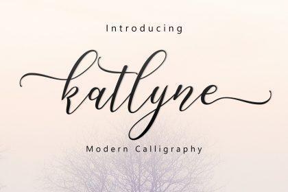 Agilita® Font Family - Fonts.com