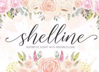 Shelline Script Font