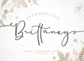 Brittaney Calligraphy Font
