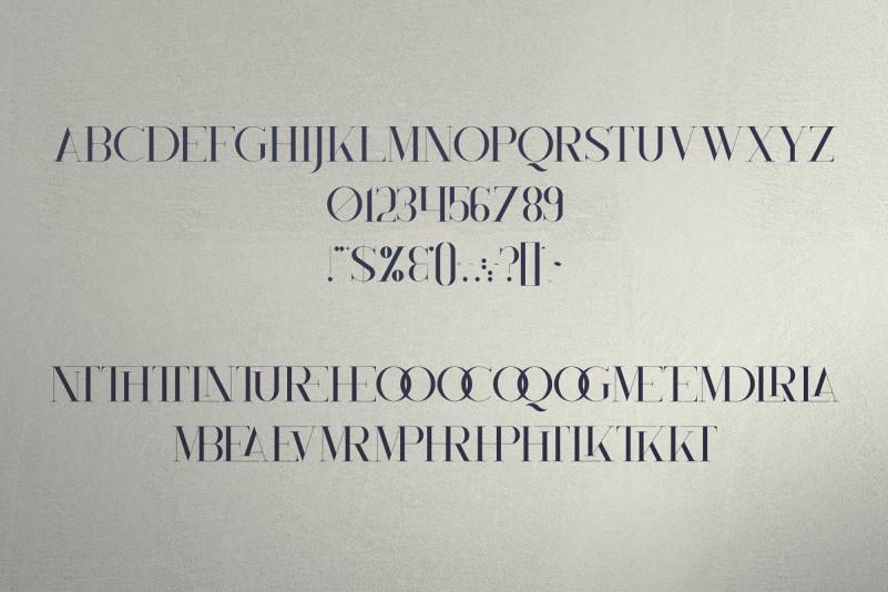Monument Serif Font