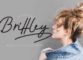 Brittley Monoline Script Font