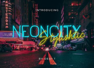 Neoncity Font Duo