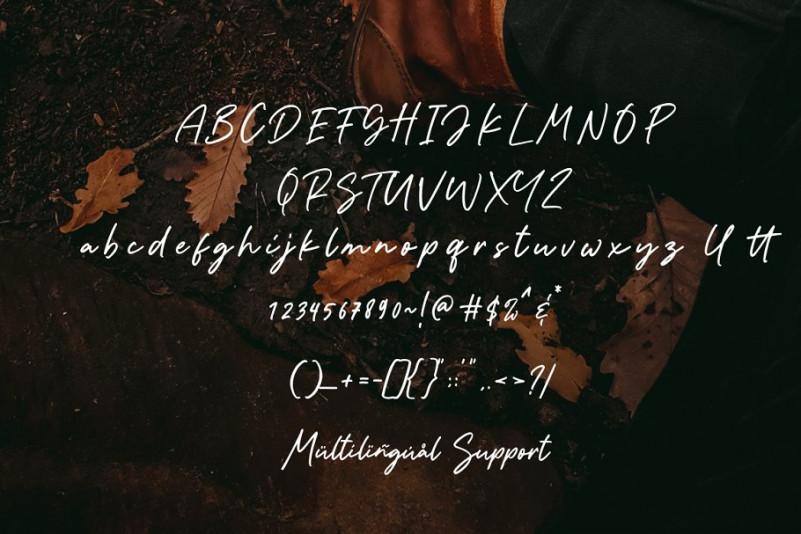 The Plumber Script Font