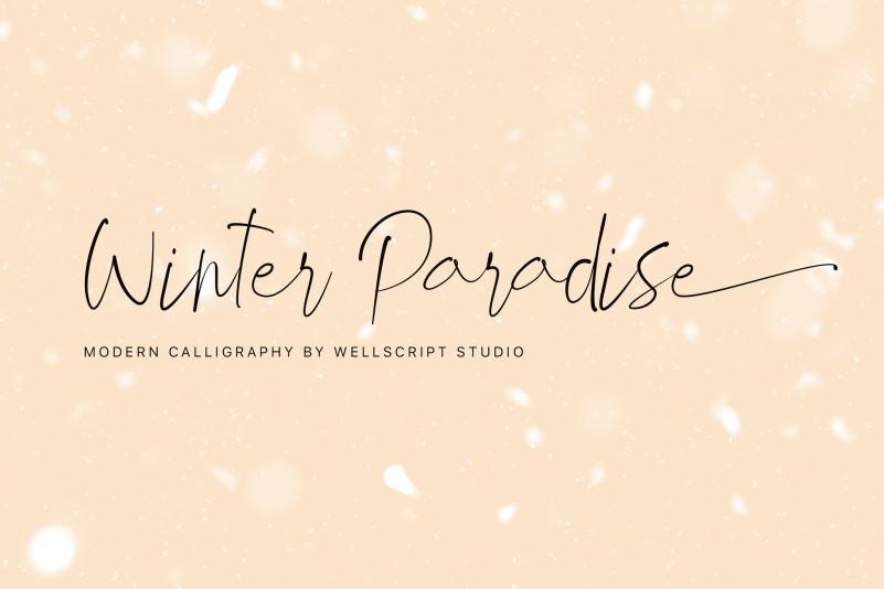 Winter Paradise - Modern Script Font