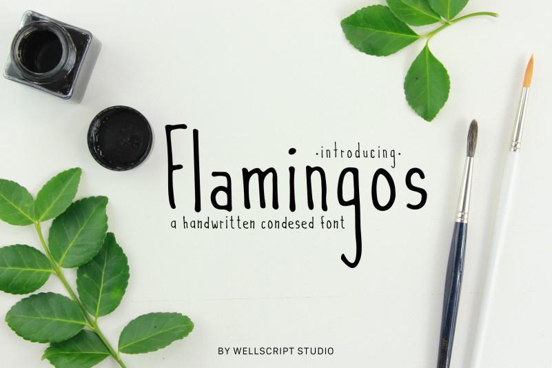 Flamingos Handwritten Font