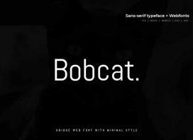 Bobcat – Modern Typeface + WebFont