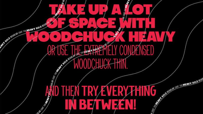Woodchuck Font Family