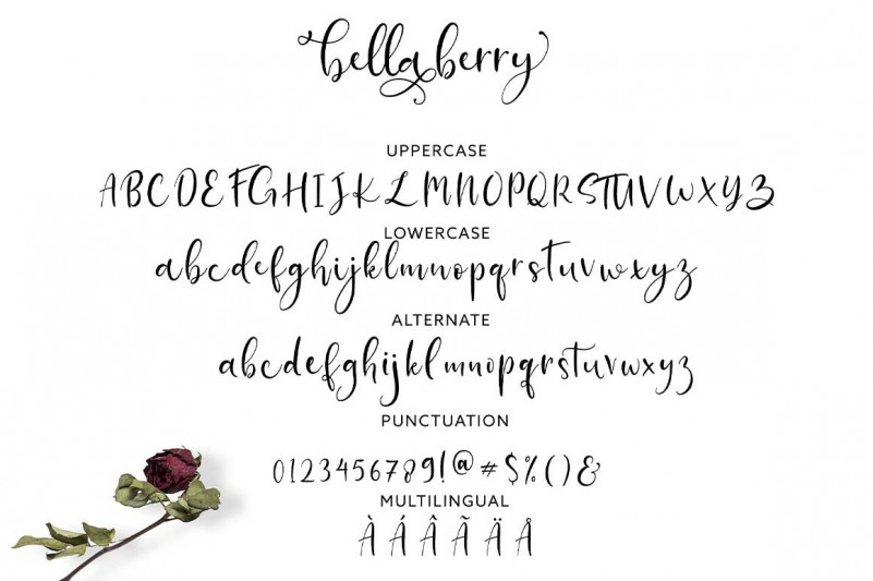BellaBerry Font