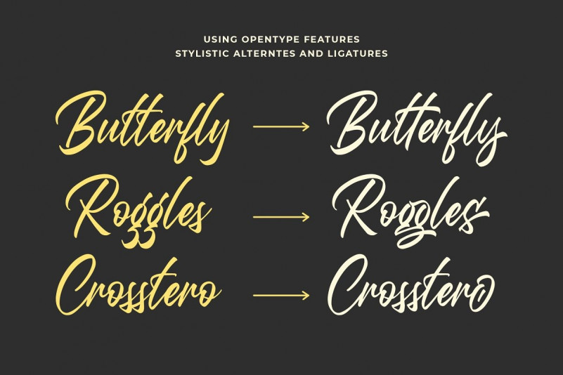Questario Brush Font