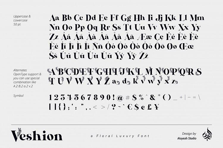 Veshion Serif Font