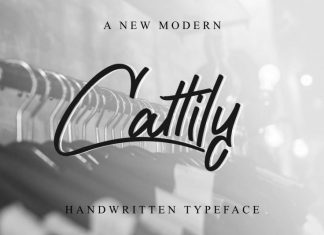 Cattily Calligraphy Font