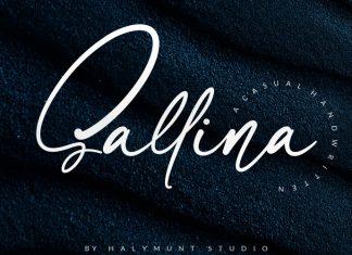 Sallina Script Font
