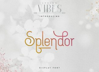 Splendor Display Font