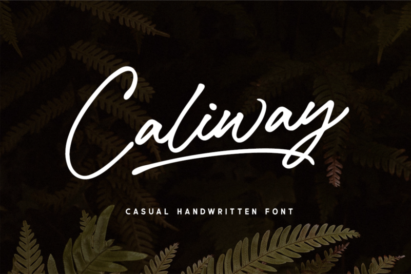 Caliway Script Font