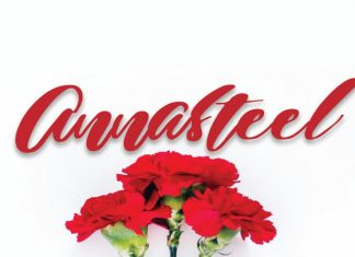 Annasteel - Bold Script Font