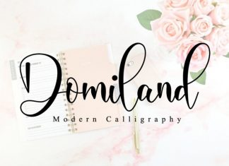 Domiland Script Font