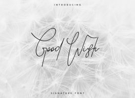 Good Wish Signature Font