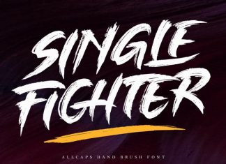 Single Fighter - Brush Font
