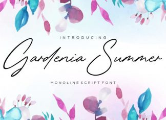 Gardenia Summer Monoline Script Font