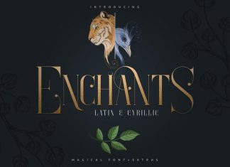 Enchants - Magical Font